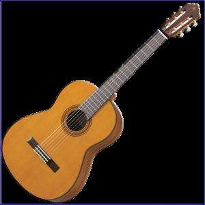 Guitar CG162C
